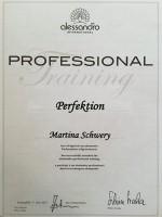 "alessandro: Fachseminar ""Perfektion"""